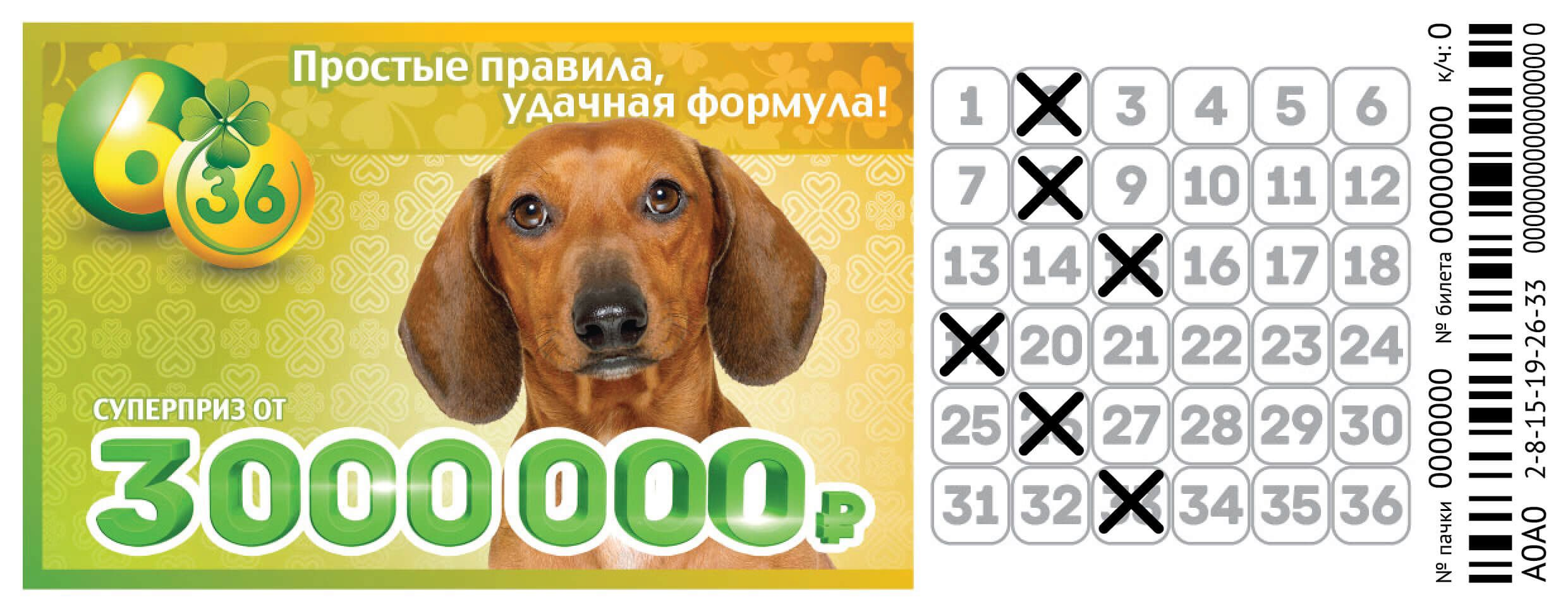 Купон лотереи 6 из 36
